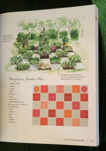 Checkerboard plan for shade