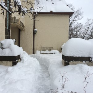 Depth of snow as seen by shoveled walk and buried bench legs