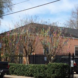 Mardi Gras beads hung in trees;