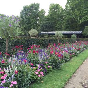 Formal beds outside the Orangerie; tapestry design; Dahlia, Salvia farinacea, Zinnia, Heliotrope, Pelargonium; Jardin du Luxembourg); Paris; 7/19/15
