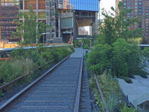 Planting in new section: railroad track path; sense of place; High Line; 8/2/15