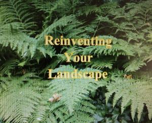 Temporary book cover