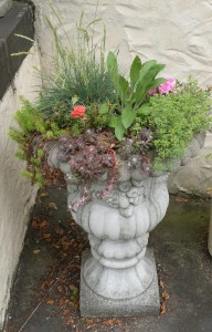 A concrete pedestal container that has been on my front porch for at least fifteen years.