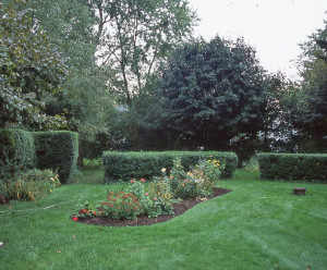 Well edged island bed