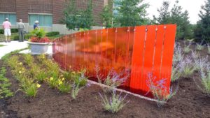 The orange fence will provide color all year round.