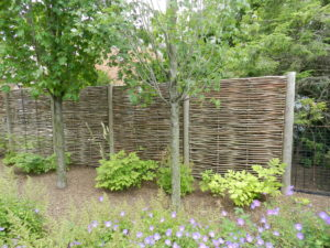 This lovely horizontal fence was designed by Deborah Silver of Detroit Garden Works.)